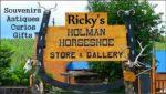 Ricky's Holman Horseshoe